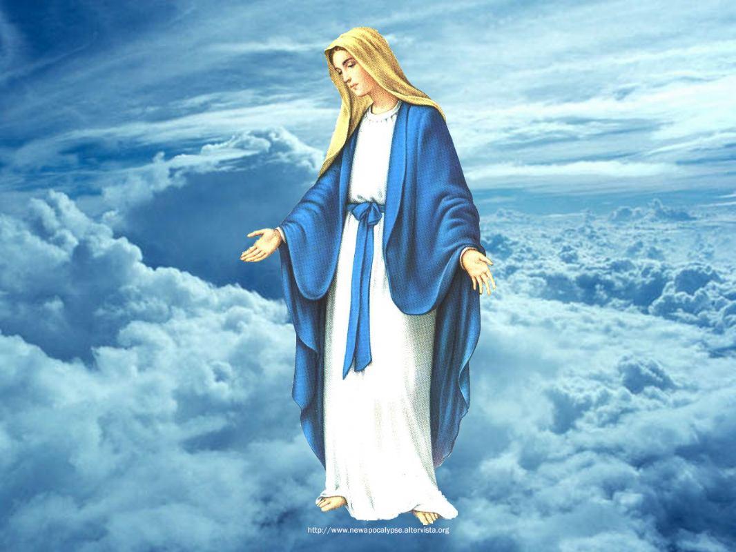 8. prosinca 2016. - Bezgrešno Začeće Blažene Djevice Marije