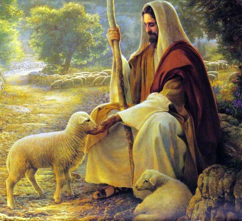 17. travnja 2016. - Nedjelja Dobrog Pastira